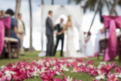 014-Arlen-Minh-031-Candid-White-Orchid-Maui-Wedding-Photography