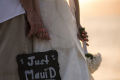 059-Melissa-Nathan-362-Details-Royal-Lahaina-Maui-Wedding-Photography
