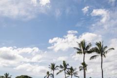 067-Marina-Jon-245-Formals-A-Dream-Gannons-Maui-Wedding-Photography