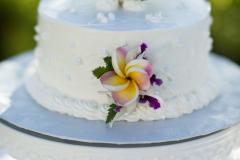 190-Bri-Rusty-091-Cake-Royal-Lahaina-Maui-Wedding-Photography