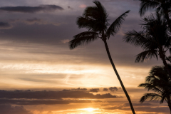 423-Keawakapu-Beach-Sunset-Maui-Wedding-Scenery-018