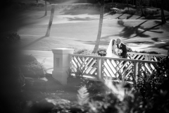 427-Marina-Jon-242-Formals-A-Dream-Gannons-Maui-Wedding-Photography