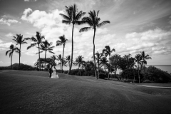 438-Marina-Jon-247-Formals-A-Dream-Gannons-Maui-Wedding-Photography